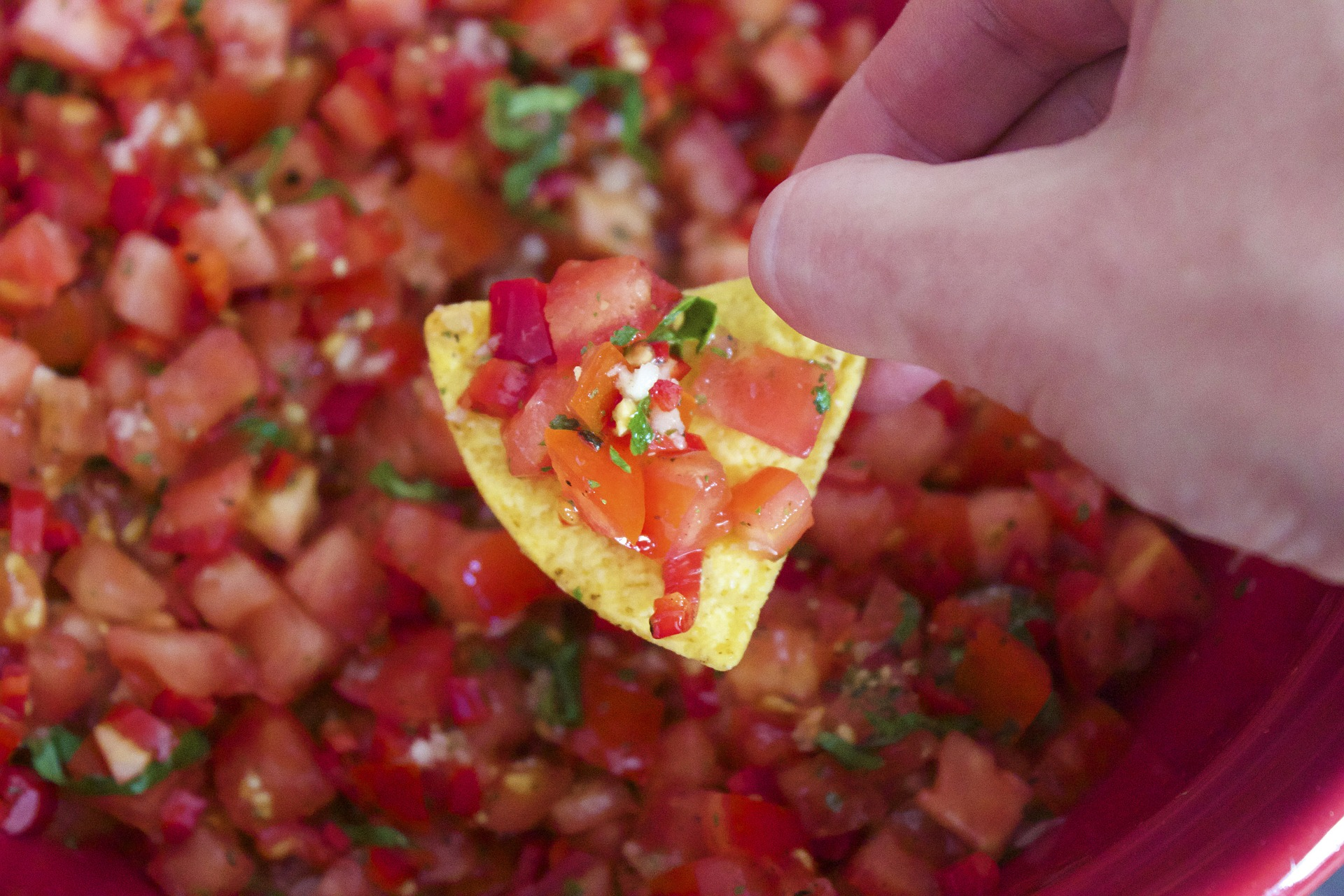 Vegetarian Nachos? Yes please! Try this tasty dish at Mother's Cafe and Garden.